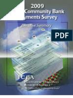 Payments Survey Execsum