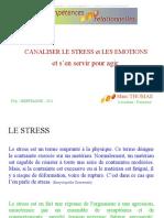 P3A Stress Emotions