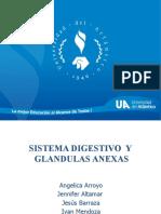SISTEMA DIGESTIVO - Exposicion (1).pptx