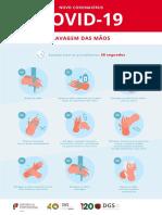 01_DGS_lavarmaos_adultos1.pdf