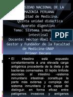 SIS.Inmunitari Intestinal