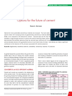 Options for the future of cement