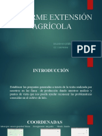 INFORME EXTENSIÓN AGRÍCOLA - BRANDON QUIÑONES ROJAS