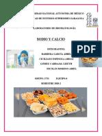 2751_EQUIPO 4_ SODIO Y CALCIO.docx