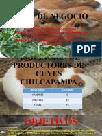 PLAN DE NEGOCIO CUYES-CHILCAPAMPA.pptx