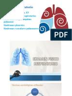 Expo aparato respiratorio (2)