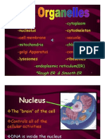 Best Cell Structure