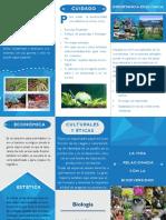 Triptico la vida relacionada con la biodiversidad.pdf