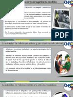 AYUDAS CNP3.pdf