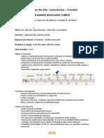 Programa de 4to Año de Capacitación.docx