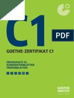 Goethe c1 Prüfung 1
