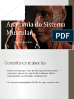 Anatomia do Sistema Muscular.pptx