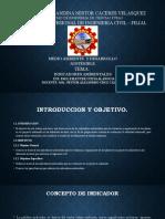 DIAPOSITIVAS_INDICADORES_AMBIENTALES