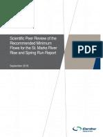 SMR MFL Peer Review Rpt Final 09.28.18 (1)