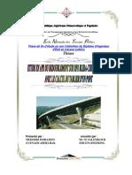 mekerbi MOHAMED+GUENAIZI ABDELHAK.pdf