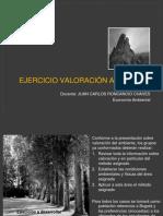 10.1 Valoración del ambiente Ejercicios