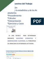 2_Guia- Usuario-Muestreo+Trabajo.pptx