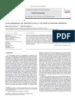 Los polifenoles del cacao se absorben en el modelo celular de epitelio intestinal Caco-2
