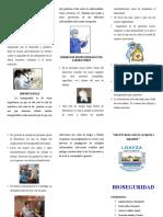 BIOSEGURIDAD-TRIPTICO.docx