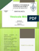 Vesícula Biliar Histología