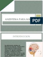expo reseccion cerebrallll