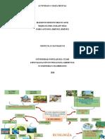 MAPA MENTAL ECOLOGÍA y ECOSISTEMAS COLOMBIANOS.docx
