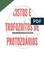 OVOS E TROFOZOÍTOS DE PROTOZOÁRIOS