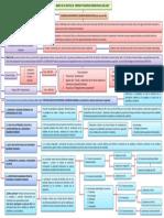 MAPA CONCEPTUAL POLITICAS PUBLICAS DE CONVIVENCIA Y SEGURIDAD CIUDADANA. La prevencion de la violencia delincuencia e inseguridad