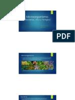 Presentación1 microorganismo