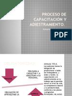 PROCESO DE CAPACITACIÃ_N Y ADIESTRAMIENTO-1.pptx