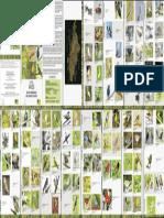 Guía Completa de Aves de los Humedales de Bogotá 2018