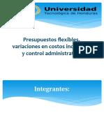 CAP 8.pptx