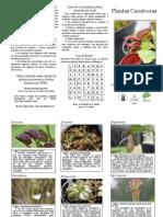 Plantas-Carnívoras-folder-gráfica