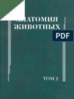 Анатомия_том2