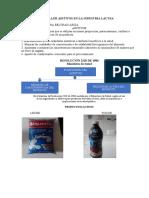 aditivos en la industria láctea.pdf