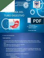 ANATOMÃ_A TUBO DIGESTIVO (1).pptx
