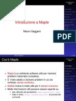 MapleIntroduction.pdf