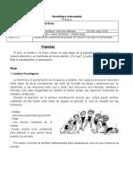 guia comprension lectora pubertad adaptada (1) (1).doc