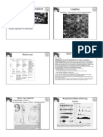 Vorlesung_Verhaltensphysiologie.pdf