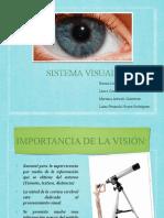 Sistema Visual (1).pptx