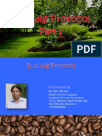 budwigprotocolsecondenglish-130511113512-phpapp02.pdf