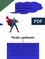 evaluacion_de_impacto_ambiental 1