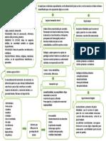 mapa patología del pensamiento. Parte dos
