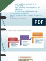2da. sem. ppt.NAGAS-NIAS-SAS-SMV (1).pdf