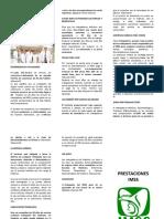 PRESTACIONES TRABAJADORES DEL SEGURO SOCIAL.docx