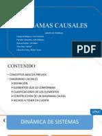 diagramas causales y fundamentos