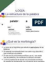 Morfología I