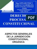 09 DPC CONTROL CONSTITUCIONAL ORG.pptx