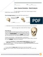 HumanEvolutionStudentExploration.docx