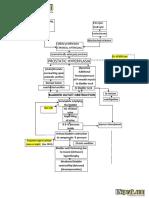 200692061-Benign-Prostatic-Hyperplasia-BPH-Pathophysiology-Schematic-Diagram.pdf